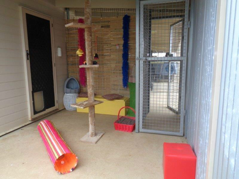 Cattery underroof external area