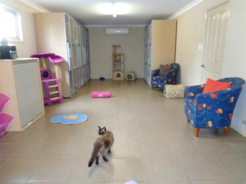 The free indoor play area is huge