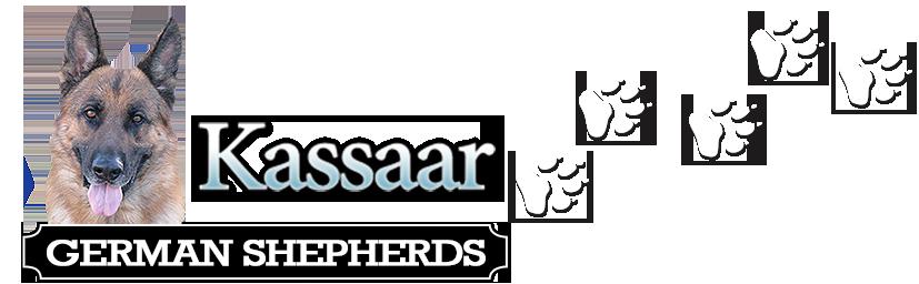 Kassaar Logo
