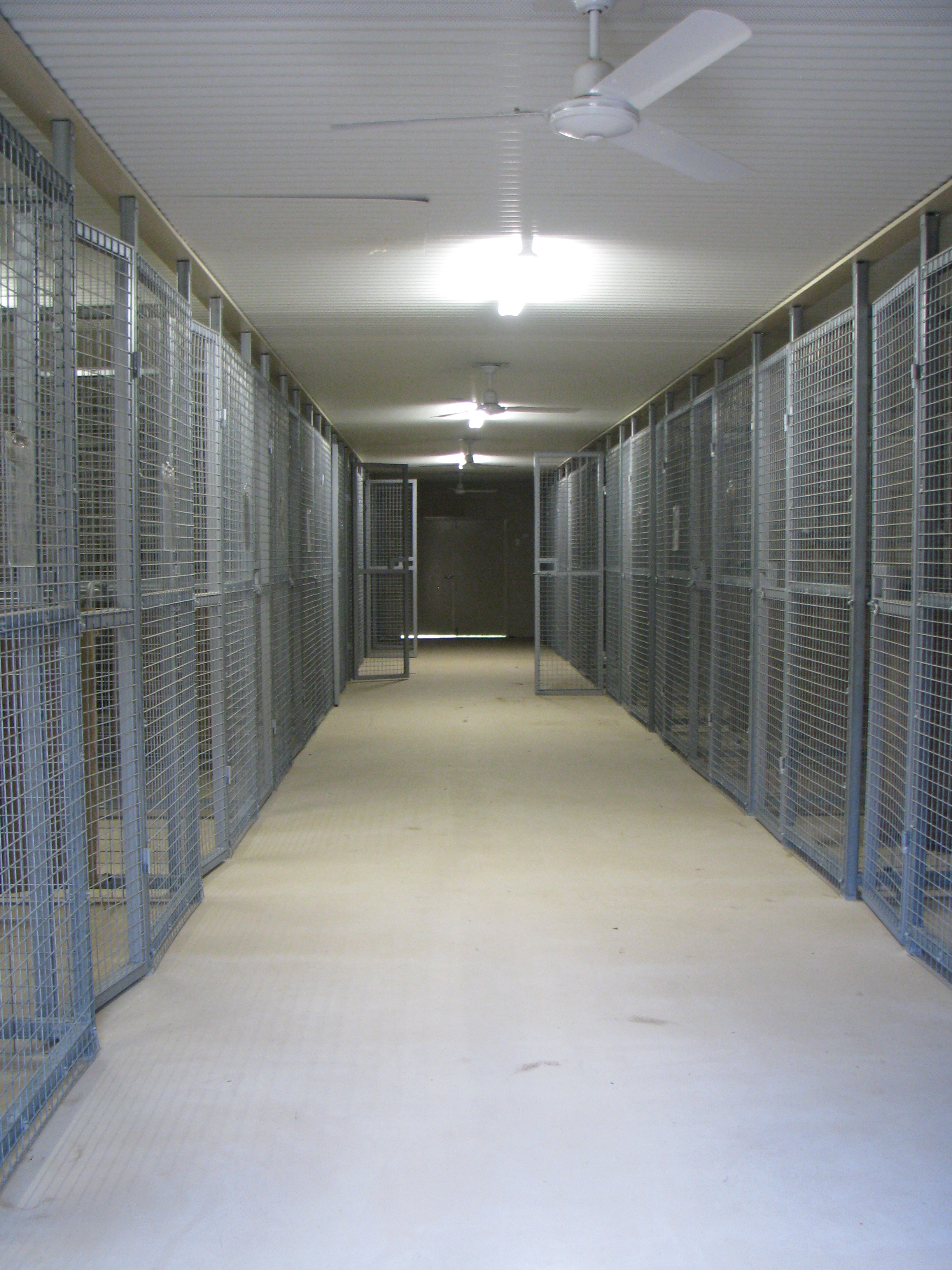 Our kennels are new and triple insulated cool in summer warm in winter