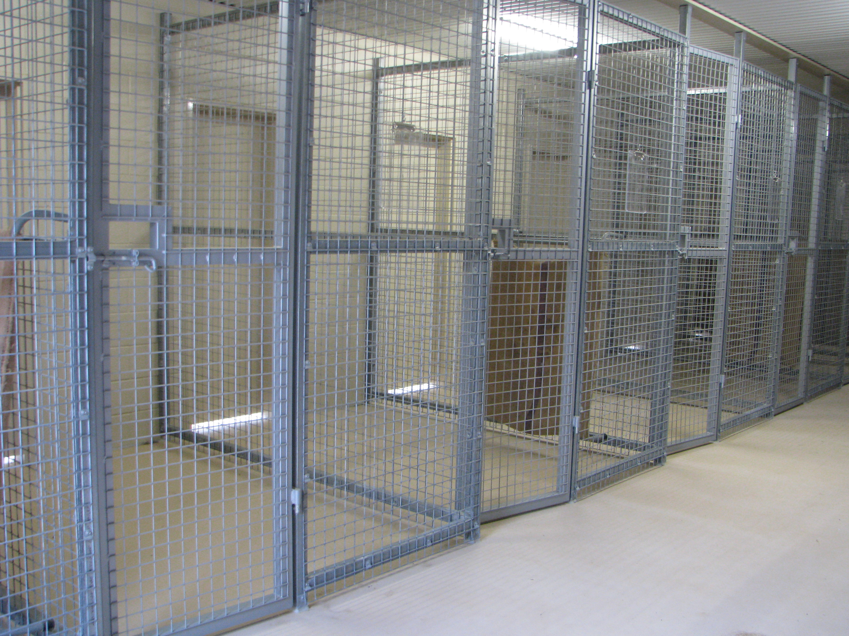 The internal kennels where our guests sleep are extremely large