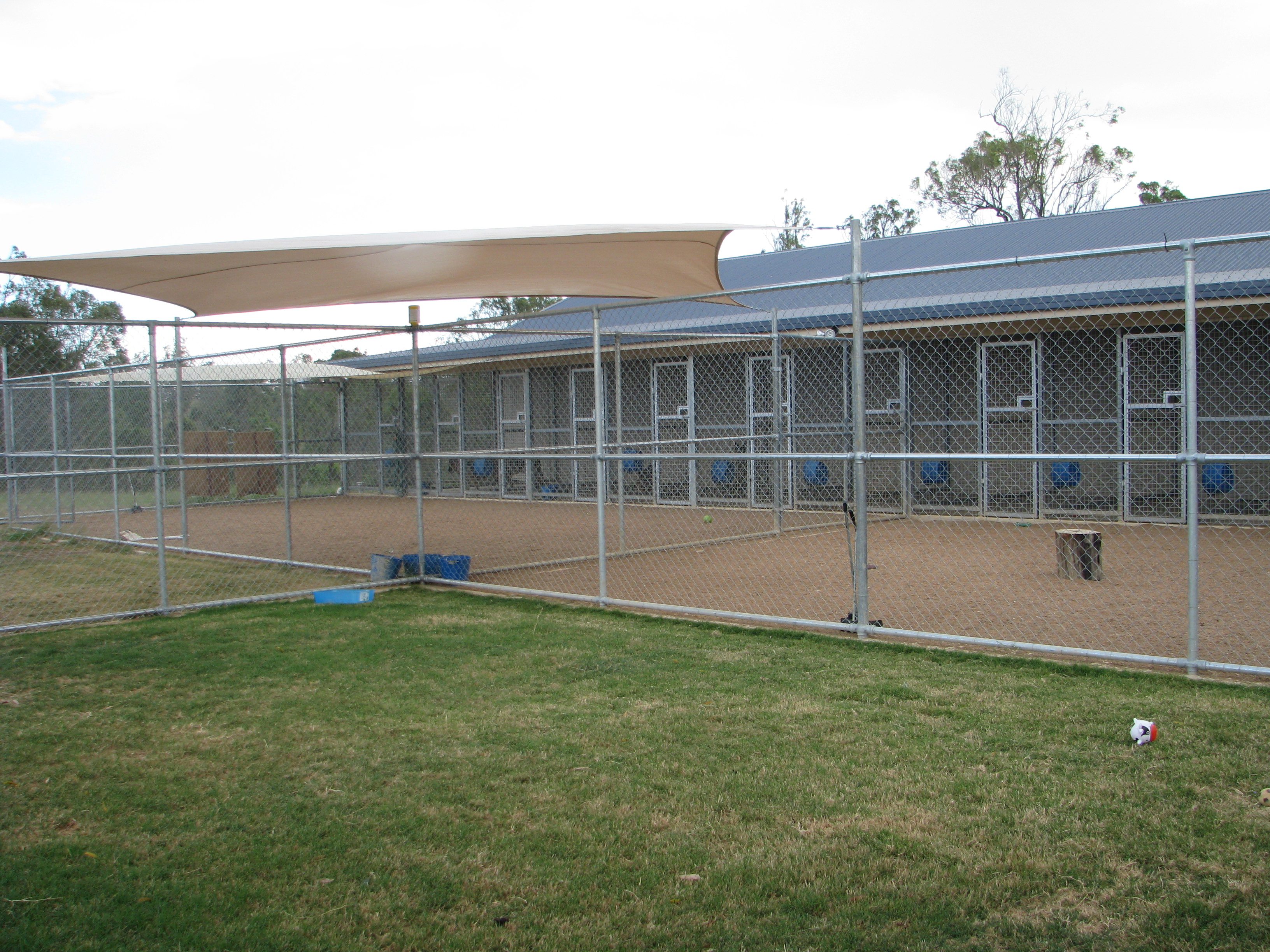 The kennels and exercise yards and designed for the comfort of your pet